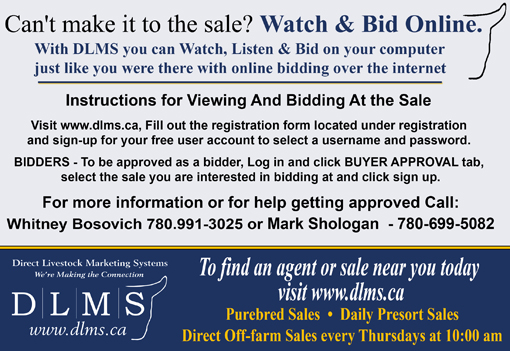 DLMS Ad for Purebred Sales web